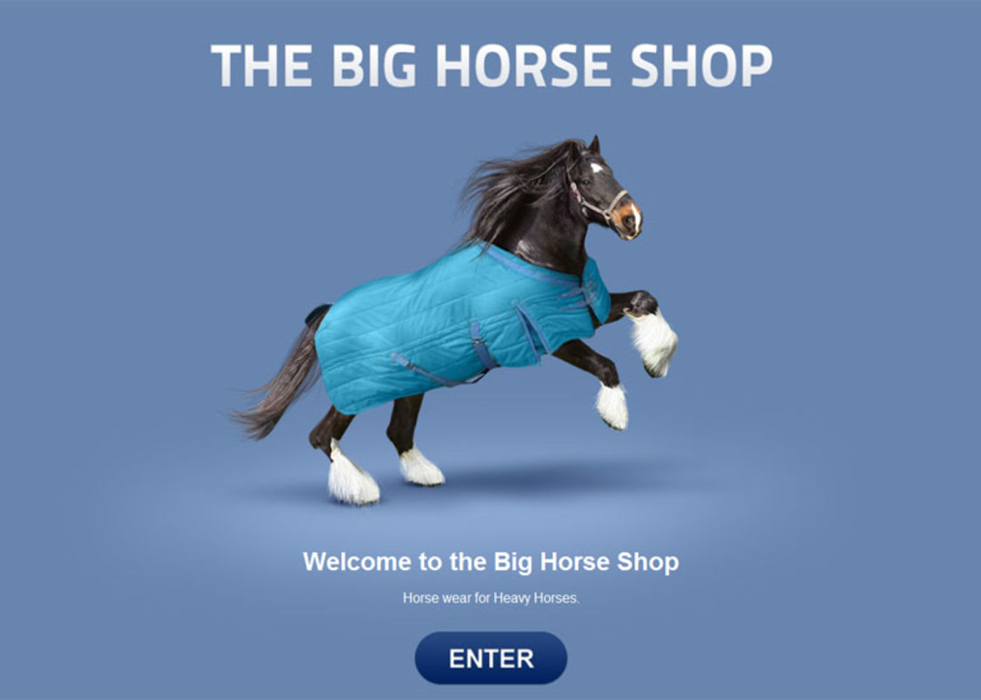 The Big Horse Shop (2009) Welcome